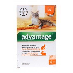 Bayer Advantage 40 Solution Antipuce Pour Chat et Lapin de - 4kg 4 Pipettes